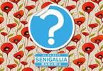 Random, una festa a caso® • Senigallia • Mamamia