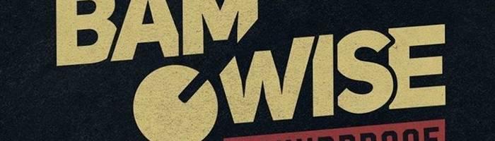 Bamwise [Croatia] pasqua dub live at Reasonanz
