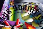 Club Adriatico Summer '17 - Ultima festa sulla spiaggia