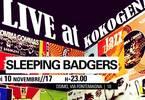 Live at Kokogena_Sleeping Badgers!