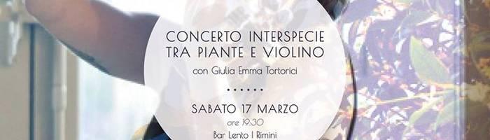 Concerto interspecie tra piante e violino