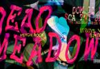 Dead Meadow, US psych - Matador + Trans Van Santos, US