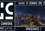 SpaceCakes a La Cambora
