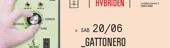 𝗞𝗹𝗮𝗻𝗴 𝗶𝘀𝘁 𝗛𝘆𝗯𝗿𝗶𝗱𝗲𝗻 presents: Gattonero