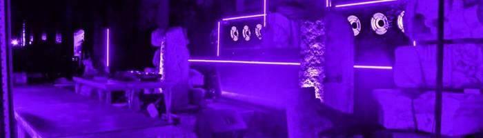 Giardino del Futuro: Alzaya Takeover | Social Dis-Dancing