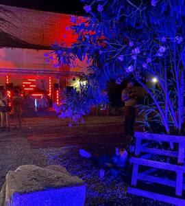 Giardino del Futuro: Industrial Romantico | Social Dis-Dancing