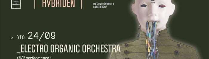 𝗞𝗹𝗮𝗻𝗴 𝗶𝘀𝘁 𝗛𝘆𝗯𝗿𝗶𝗱𝗲𝗻 pr. Electro Organic Orchestra