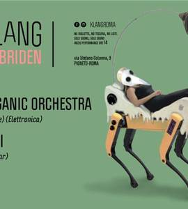 𝗞𝗹𝗮𝗻𝗴 pr. Electro Organic Orchestra| Grumvalski| Lazy Ants